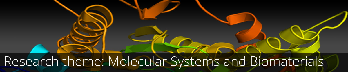 Research theme: Molecular Systems and Biomaterials