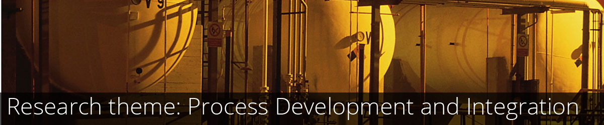 Research theme: Process Development and Integration