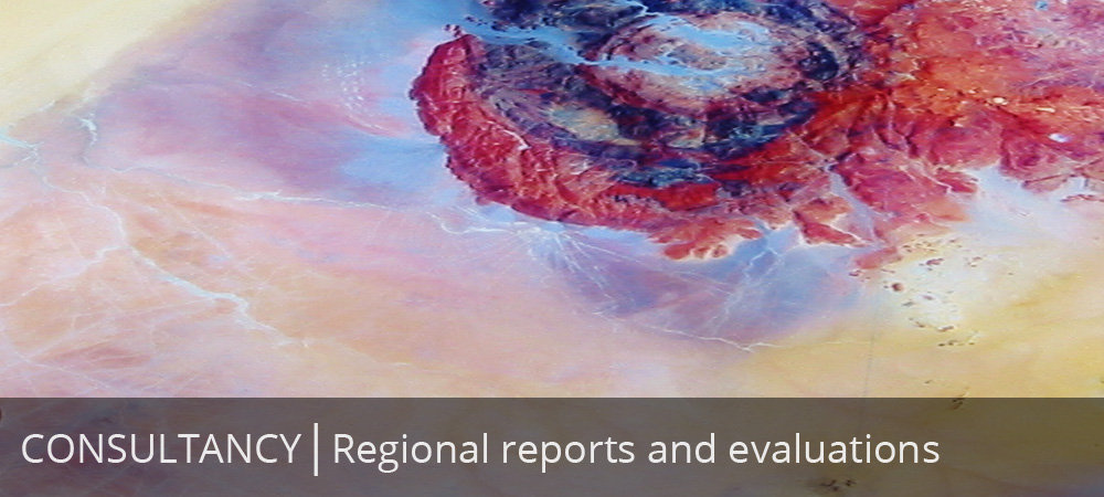 Regional reports and evaluations